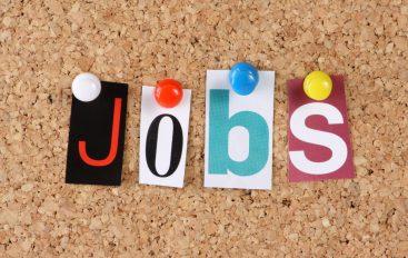 Trouver le job idéal, c'est possible ?